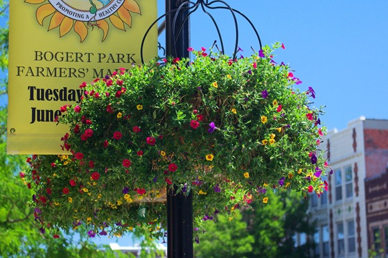 Bozeman montana for Flower delivery bozeman mt
